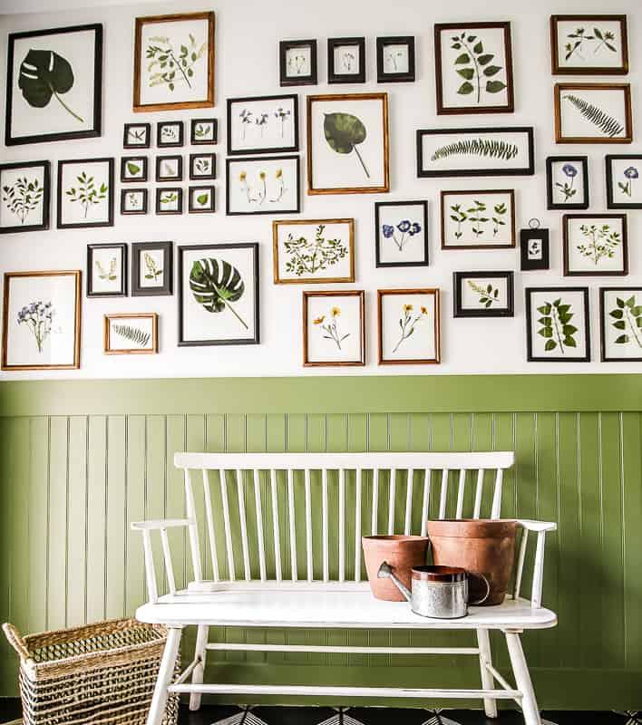 Pressed-Botanical- Gallery